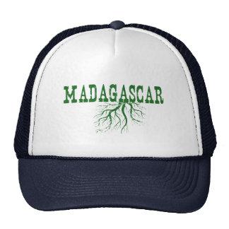 Raíces de Madagascar Gorra