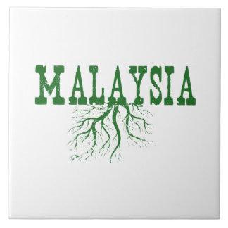 Raíces de Malasia Azulejo Cuadrado Grande