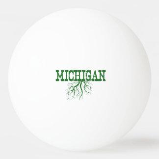 Raíces de Michigan Pelota De Tenis De Mesa