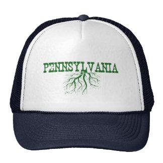 Raíces de Pennsylvania Gorros Bordados