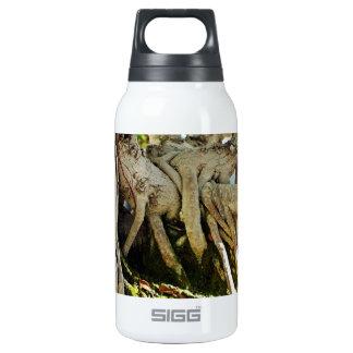 Raíces del árbol de los bonsais del Banyan del
