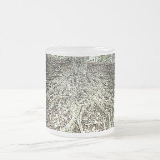 Raíces del árbol taza de cristal