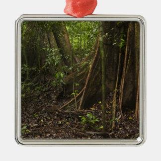 Raíces del contrafuerte. Selva tropical, Mapari Ornaments Para Arbol De Navidad