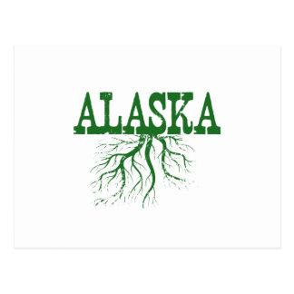 Raíces del estado de Alaska Tarjetas Postales