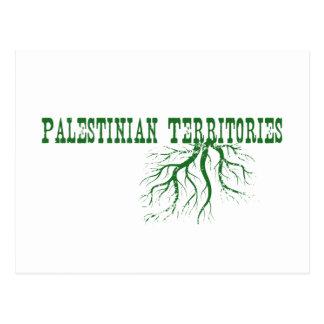 Raíces palestinas de los territorios tarjetas postales