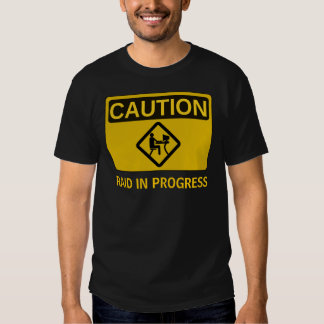 Raid in Progress T-Shirt
