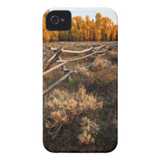 Rail Fence Across Sage Brush In Grand Teton iPhone 4 Case