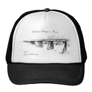 Railroad Bridge in Winter hat