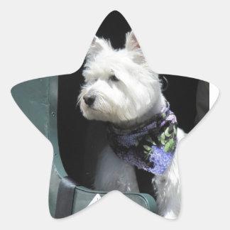 Railroad Terrier Dog Star Sticker