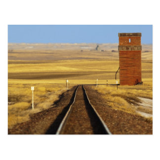 Railroad tracks lead to old granary at Collins Postcard