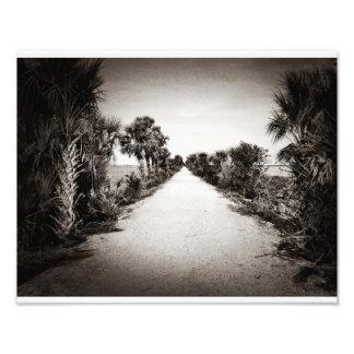 Rails To Trails Black And White Photo Print