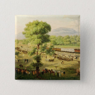 Railway in the Valley of Mexico, 1869 Pinback Button