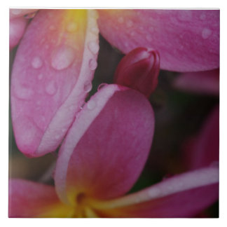 Rain and Plumeria Tile