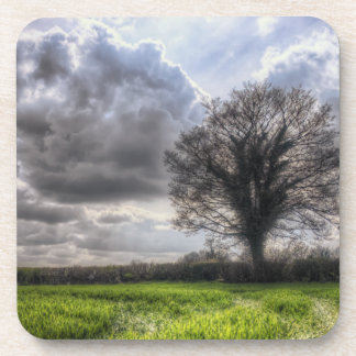 Rain Clouds in Spring HDR Beverage Coasters