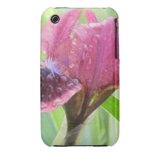 Rain Covered Iris iPhone 3 Cover