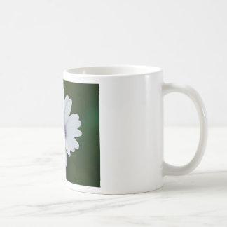 Rain Daisy Coffee Mugs
