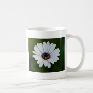 Rain Daisy Mug