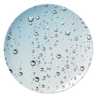 rain dinner plate