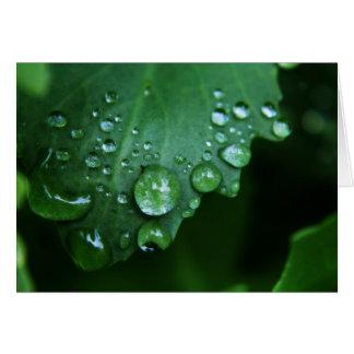 Rain Drop Blank Note Card