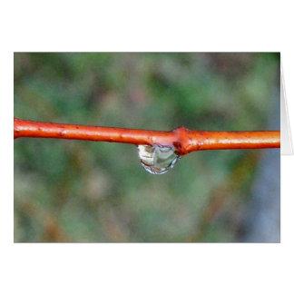 Rain drop card
