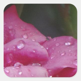Rain Drop Flower Square Sticker