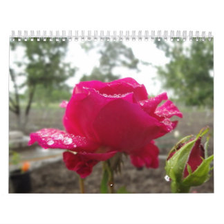 Rain droplets rose calendar