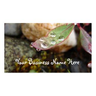 Rain Drops on Leaf Business Card