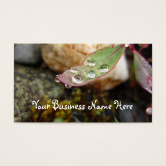 Rain Drops on Leaf Business Card