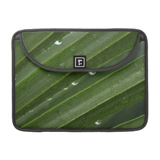 Rain Drops on Palm Frond MacBook Pro Sleeve