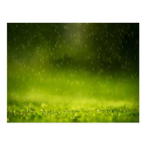 Rain Drops Postcards