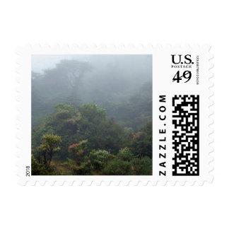 Rain Forest Costa Rica Postage