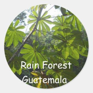 Rain forest, Guatemala Classic Round Sticker