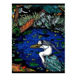 Rain Forest Swamp Postcard