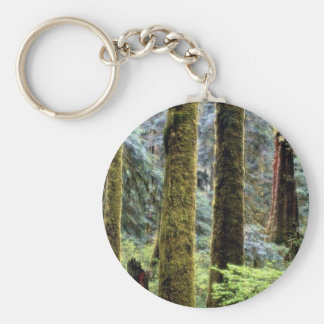Rain forest, Tofino, British Columbia from the For Keychain
