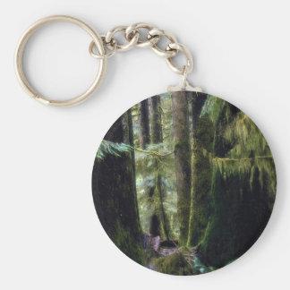 Rain forest, Tofino, British Columbia Key Chains