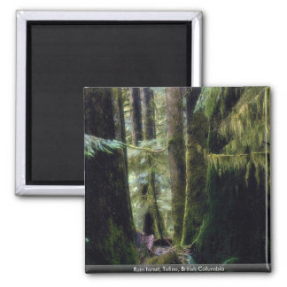 Rain forest Tofino British Columbia Fridge Magnets