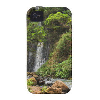 Rain Forest Waterfall iPhone 4 Case