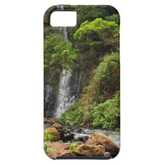 Rain Forest Waterfall iPhone 5 Case