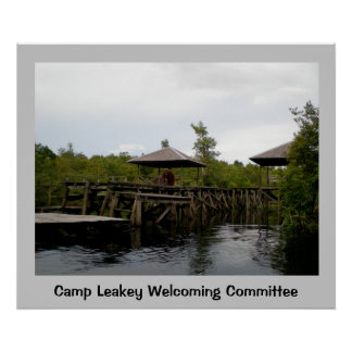 Rain Forest Welcoming Committee Print