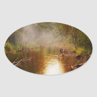 Rain in the Forest Oval Stickers