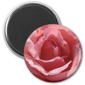 Rain Kissed Rose #2 2 Inch Round Magnet