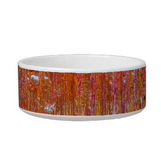 Rain on Glass with Pretty Colors Pet Water Bowls