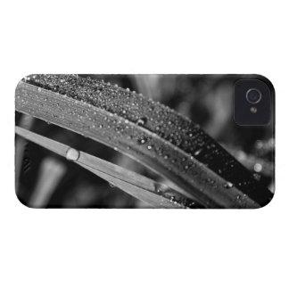 Rain on grass iPhone 4 case
