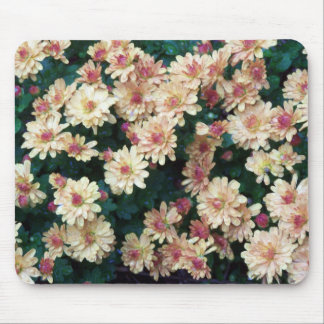 Rain on The Mums#3 Mouse Pad