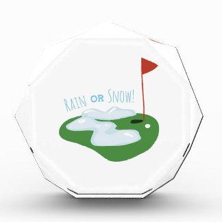 Rain Or Snow Acrylic Award