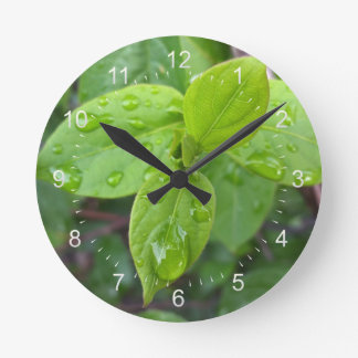 Rain over leaves round clock