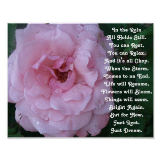 Rain Poem on a Beautiful Pink Rose with Raindrops Poster