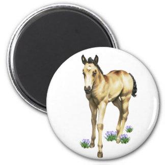 Rain Quarter Horse Filly Refrigerator Magnets