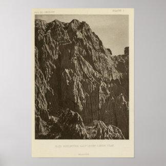 Rain sculpture, Salt Creek Canon, Utah Poster