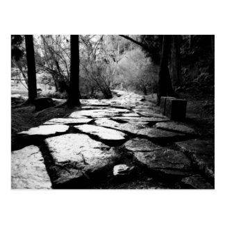 Rain-soaked paving stones postcard